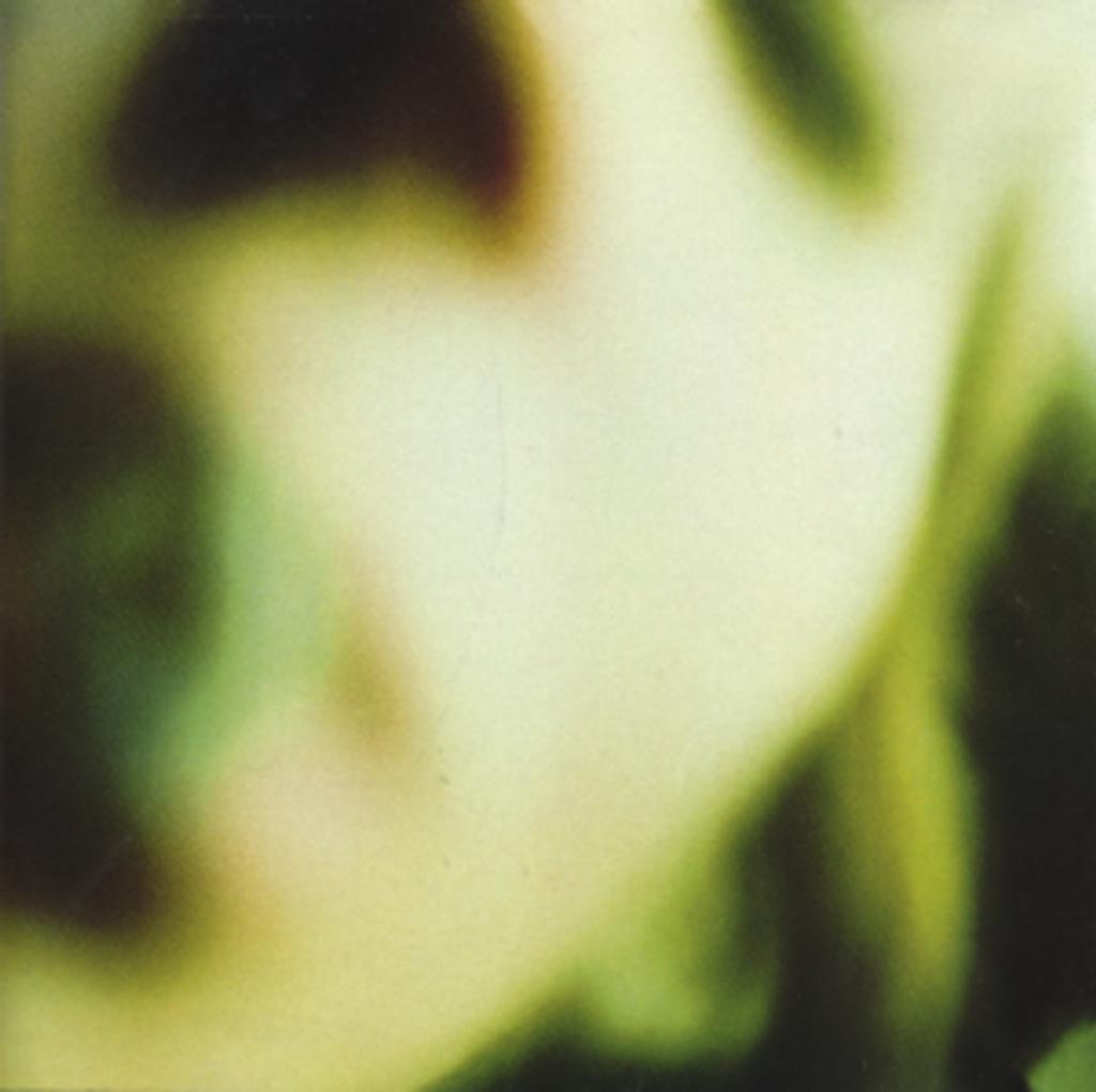 Pisces iscariot / The Smashing Pumpkins, gr. voc. et instr.   SMASHING PUMPKINS (THE). Interprète